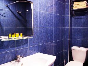 dddbathroom1
